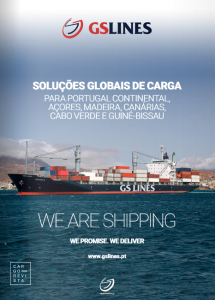 GS Lines solutions cargo